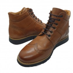 Low Boots Anteos (brown)
